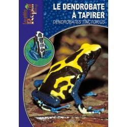 Le Dendrobate à Tapirer - Dendrobates tinctorius