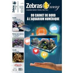 ZebrasO'mag N°31