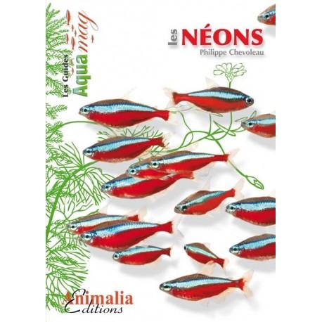 Les Néons