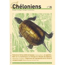 Chéloniens N°24