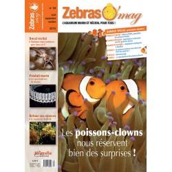 ZebrasO'mag N°34