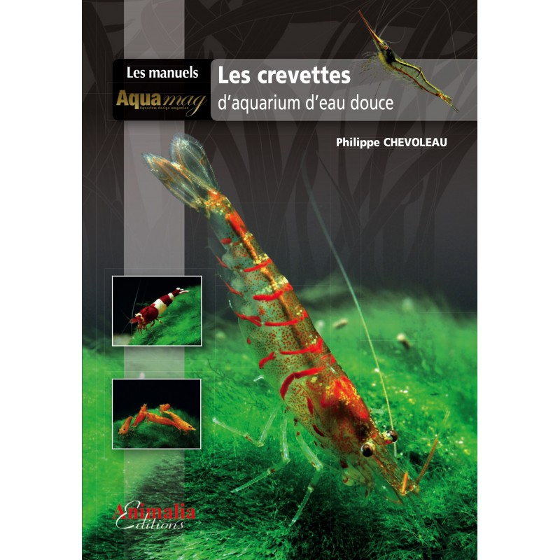 Crevette eau douce aquarium 28 images exemple crevette for Aquarium eau douce pas cher