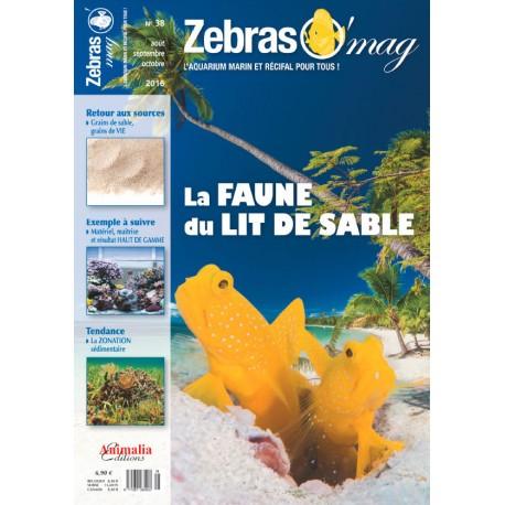 ZebrasO'mag N°38