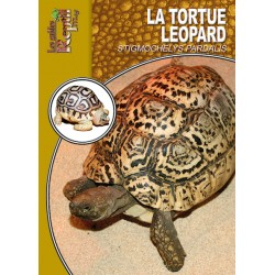 La tortue léopard