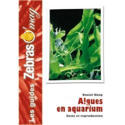 Les algues en aquarium marin, Lutte et Culture