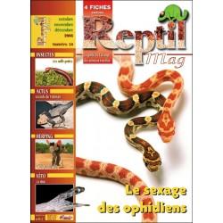 Reptilmag N°34
