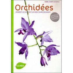 Orchidées, comment les faire fleurir facilement
