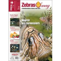 ZebrasO'mag N°17