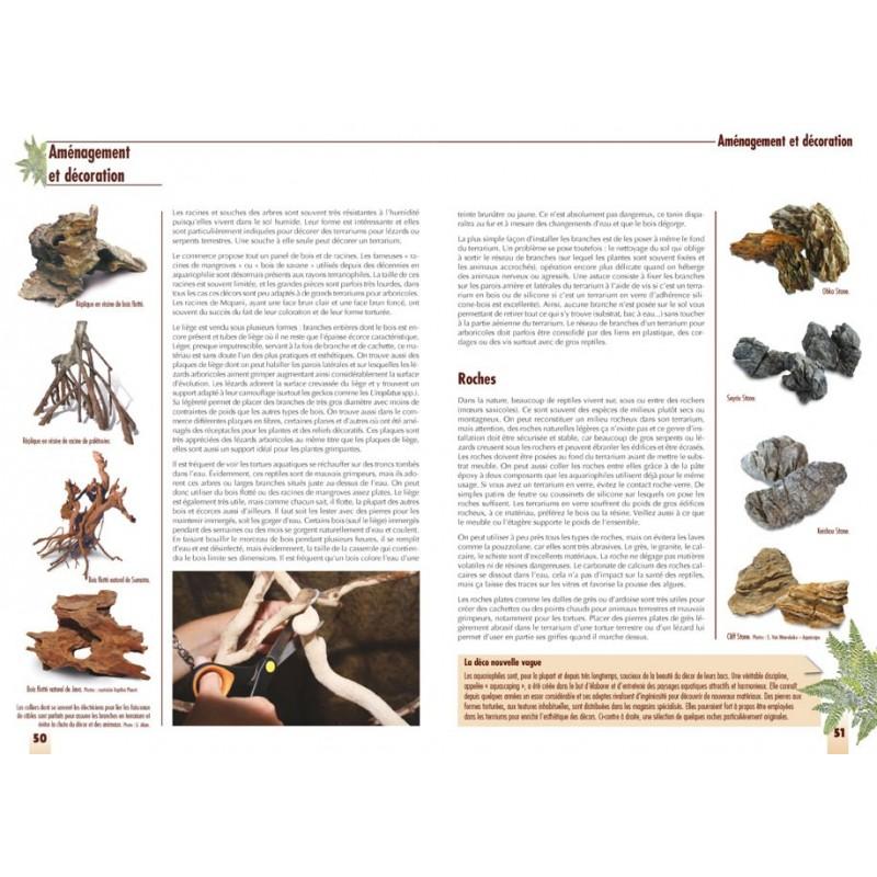 les plantes de terrarium animalia