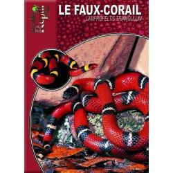 Le Faux-Corail - Lampropeltis triangulum