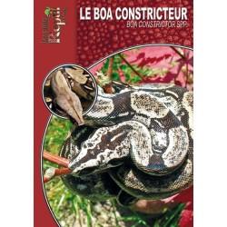 Le Boa Constricteur - Boa constrictor