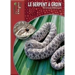 Le serpent à groin - Heterodon nasicus