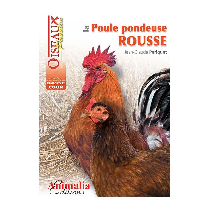la poule pondeuse rousse animalia editions. Black Bedroom Furniture Sets. Home Design Ideas