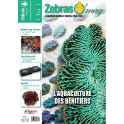 ZebrasO'mag N°29