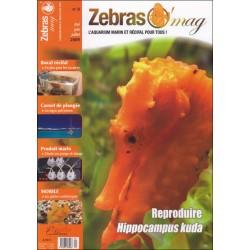 ZebrasO'mag N°9