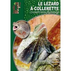 Le Lézard à Collerette - Chlamydosaurus kingii