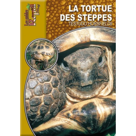 La Tortue des Steppes - Testudo horsfieldii