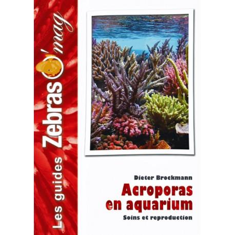 Acropora en aquarium