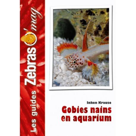 Gobies nains en aquarium