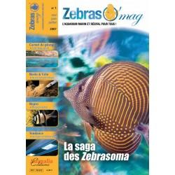 ZebrasO'mag N°1