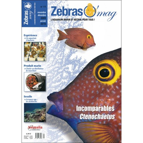 ZebrasO'mag N°11