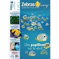 ZebrasO'mag N°32