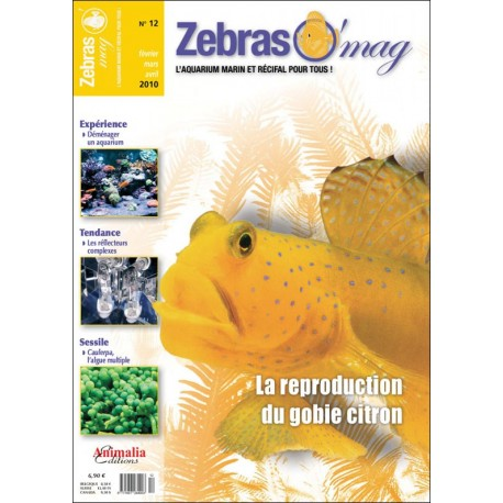 ZebrasO'mag N°12
