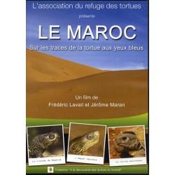 DVD Le Maroc - Sur les traces de la tortue aux yeux bleus