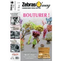 ZebrasO'mag N°33