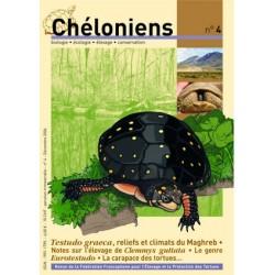 Chéloniens N°04
