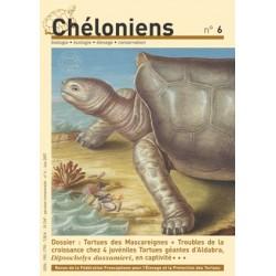 Chéloniens N°06