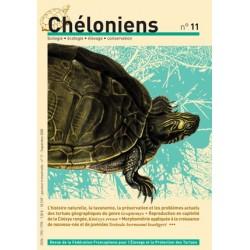 Chéloniens N°11