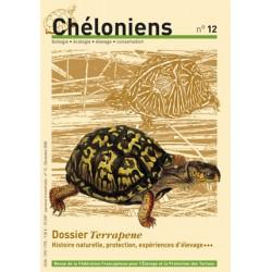 Chéloniens N°12