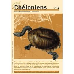 Chéloniens N°14