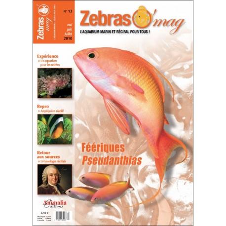 ZebrasO'mag N°13
