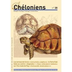 Chéloniens N°20