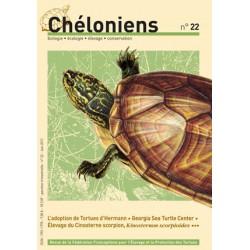 Chéloniens N°22