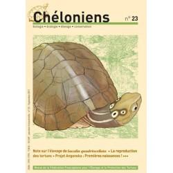 Chéloniens N°23