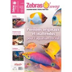 ZebrasO'mag N°35