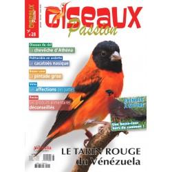 Oiseaux Passion N°28