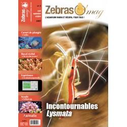 ZebrasO'mag N°2