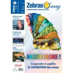 ZebrasO'mag N°37