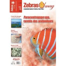 ZebrasO'mag N°16