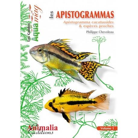 Les Apistogramma 1 (cpx cacatuoides)