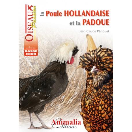 La poule hollandaise et la padoue