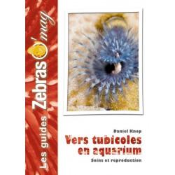 Vers Tubicoles en aquarium