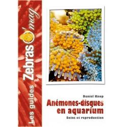 Les anémones-disques en aquarium