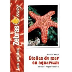 Etoiles de mer en aquarium