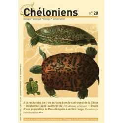 Chéloniens N°28