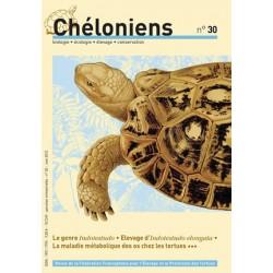 Chéloniens N°30